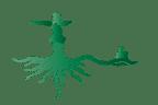 yoga yucca logo carlo mancini